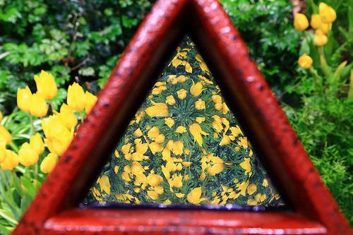 [心得] 富山礪波一年四季都能欣賞美麗鬱金香的地方-四季彩館